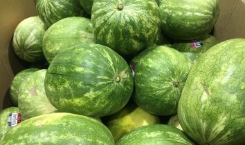 how to pick the best watermelon