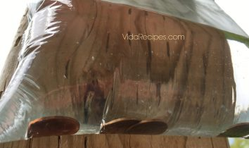 Zip Lock Baggies Keep Flies Away